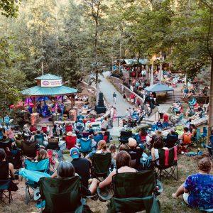 Reevestock Music Festival Daytime image